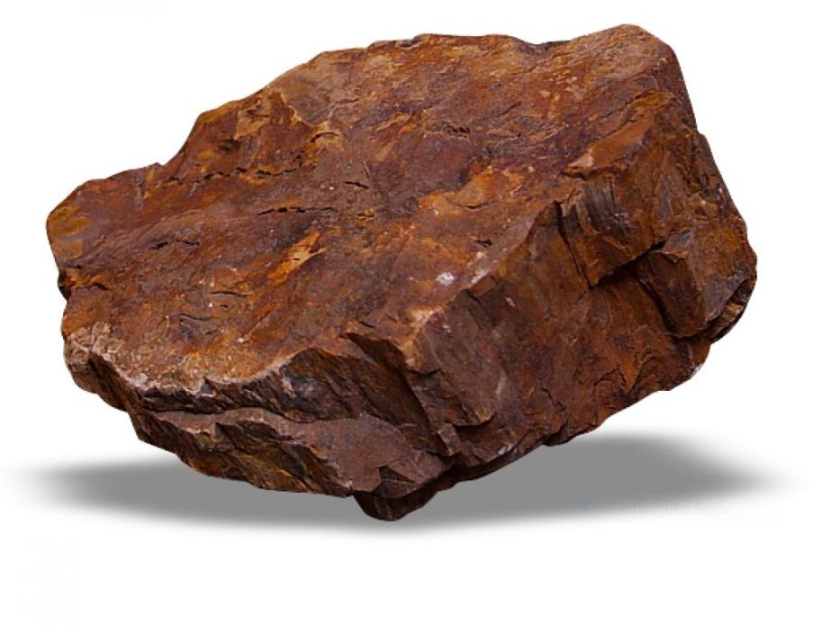 Er karbon dating brukes for dinosaurer
